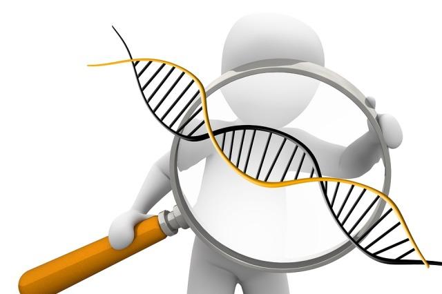 deoxyribonucleic-acid-1500068_960_720